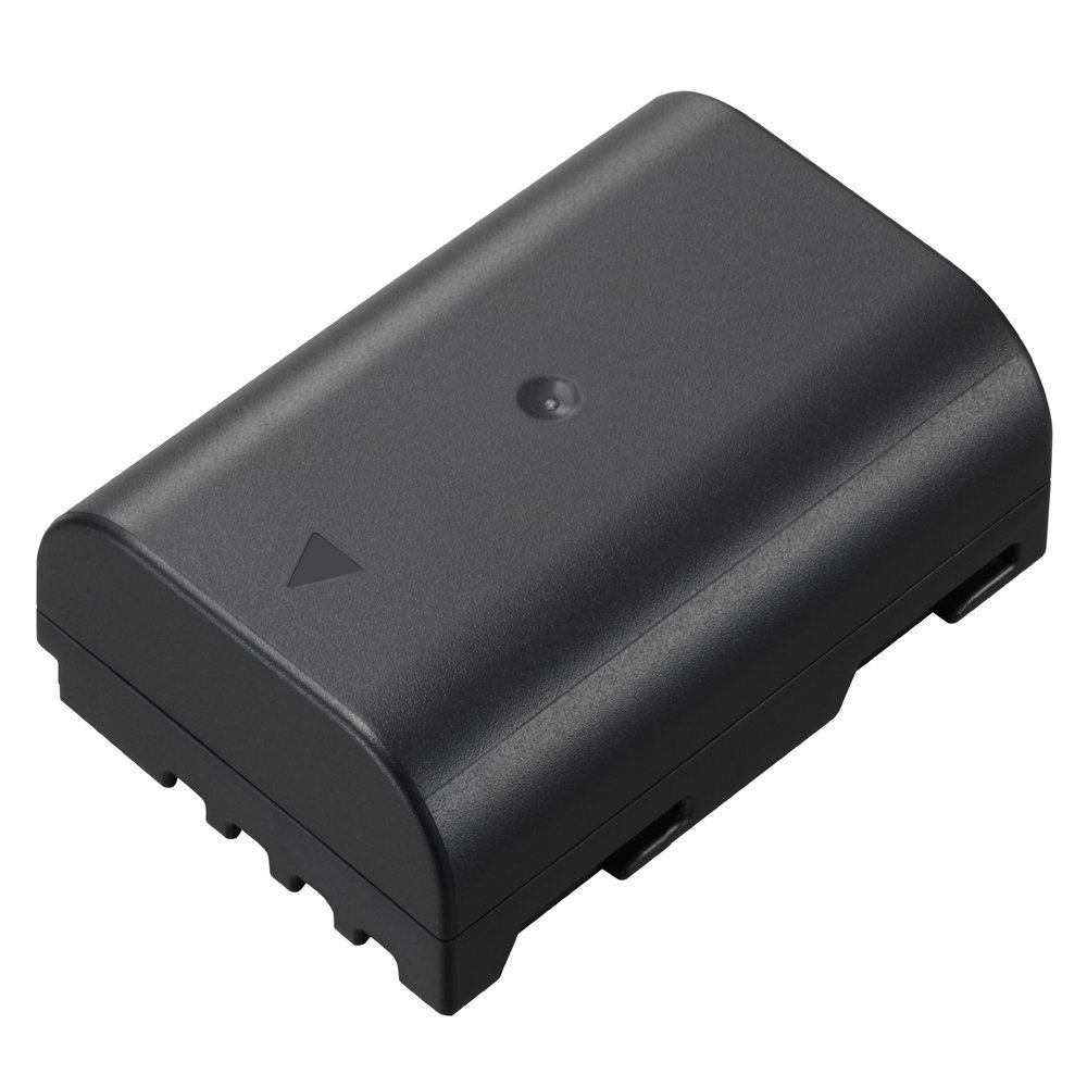 Panasonic DMW-BLF19 Lithium-Ion Battery Pack (Black)